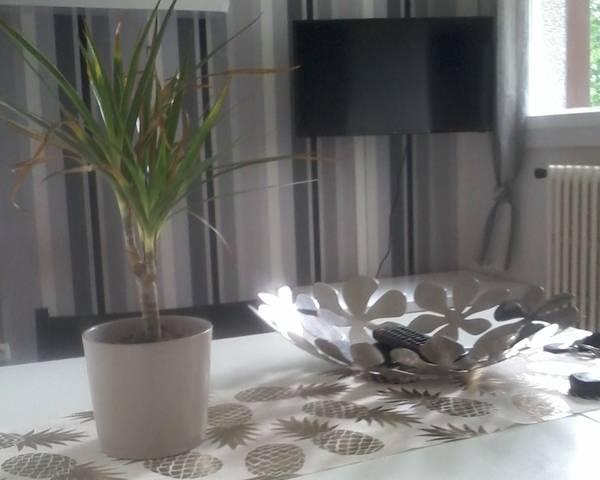Location Studio meublé en rez-de-chaussée / accès PMR - 20140101 033219