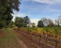 Château et son domaine viticole médaillé - 20191028 155536