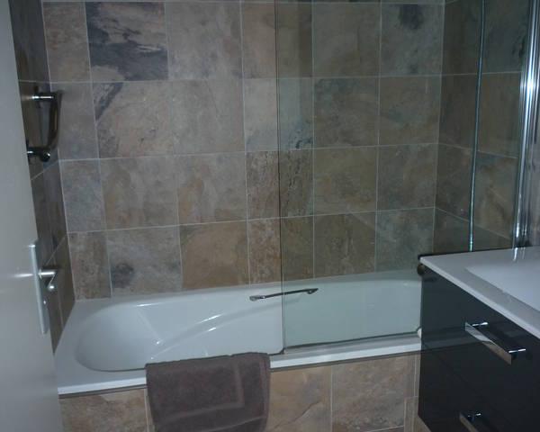 F2 meublé / Parc du Savoy / Proche Parc / Avon - P1040966